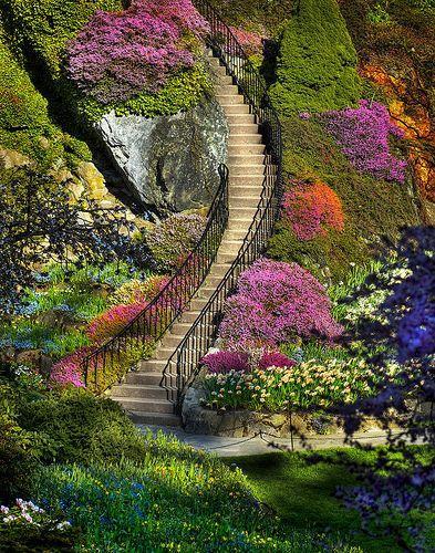 Mariage - Butchart Garden Stairway