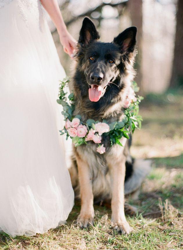زفاف - Whimsical Woodland Bridal Shoot