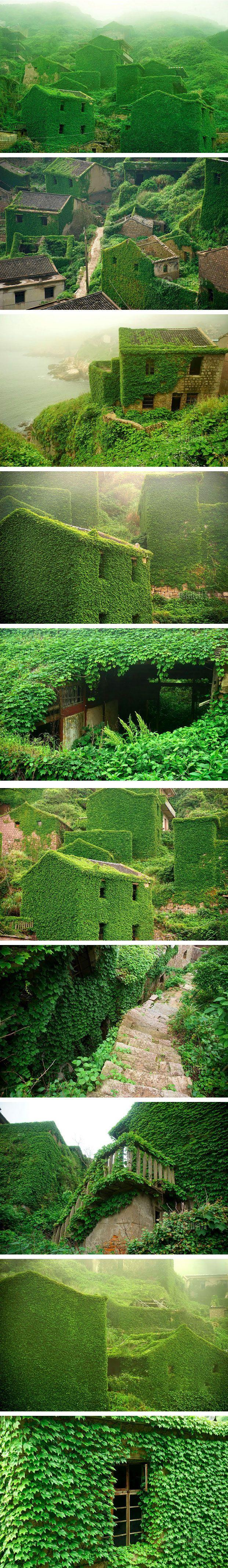 زفاف - Photographer Captures Amazing Images Of An Abandoned Chinese Fishing Village Being Reclaimed By Nature