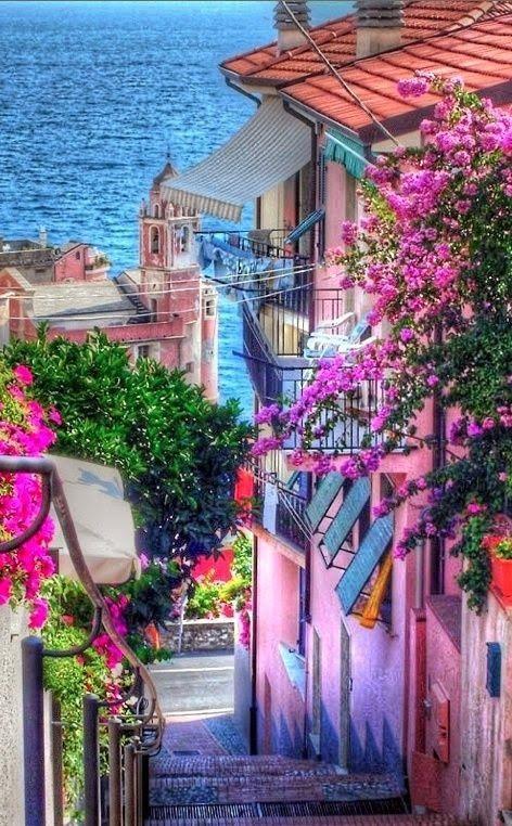 Mariage - Street In Tellaro, Italy