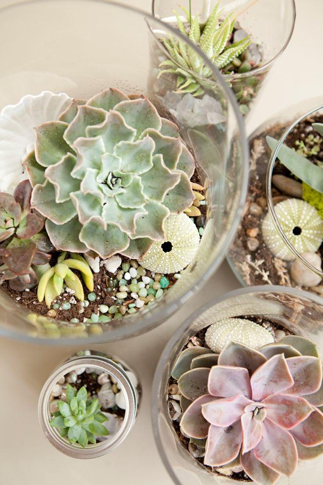 Hochzeit - Learn How To Make Terrariums For Your Wedding!
