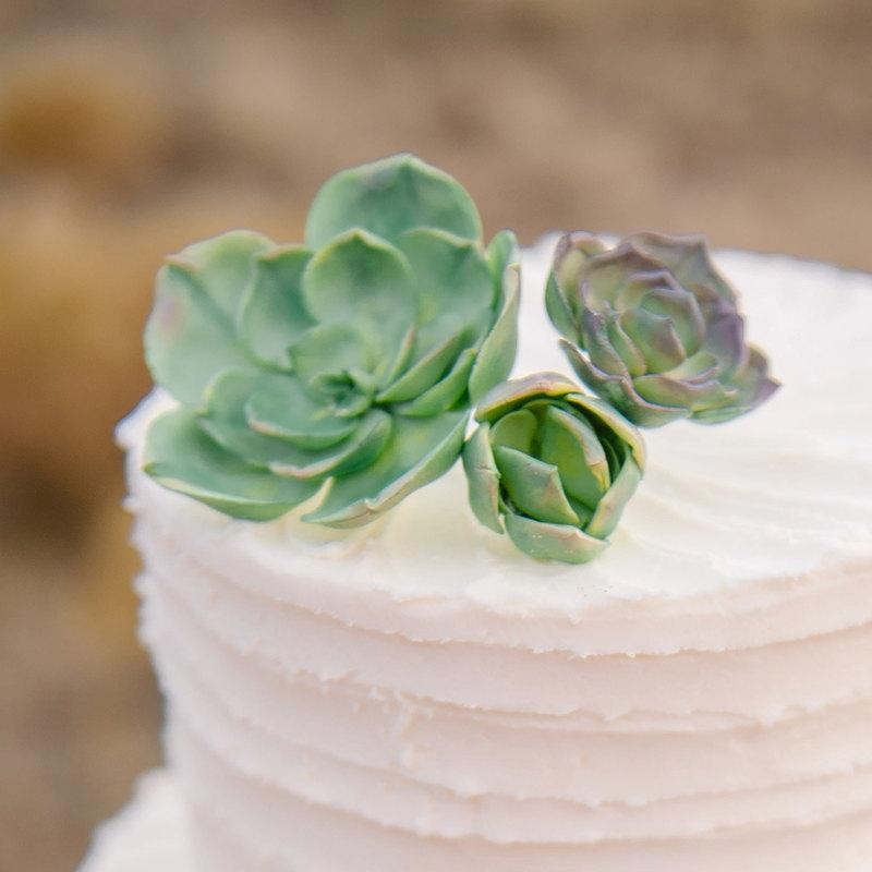 sugar succulents toppers for cakes or cupcakes wedding bridal shower sugar work