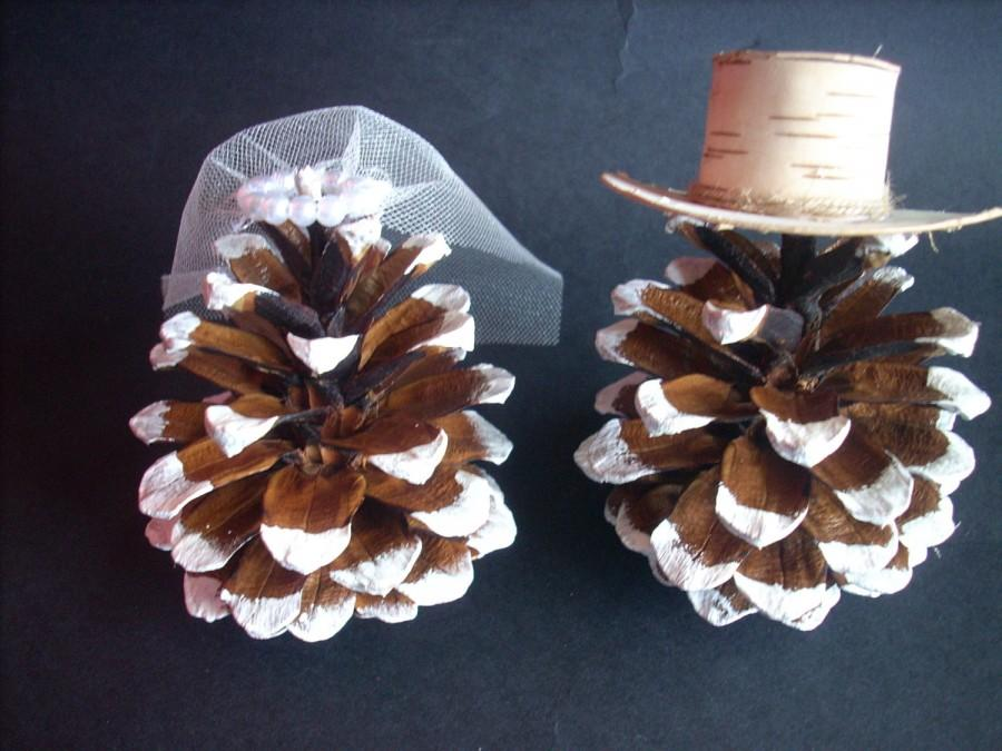 Rustic Wedding Cake Topper Pine Cone Winter ToppersMr Mrs TopperFrosted Pinecones