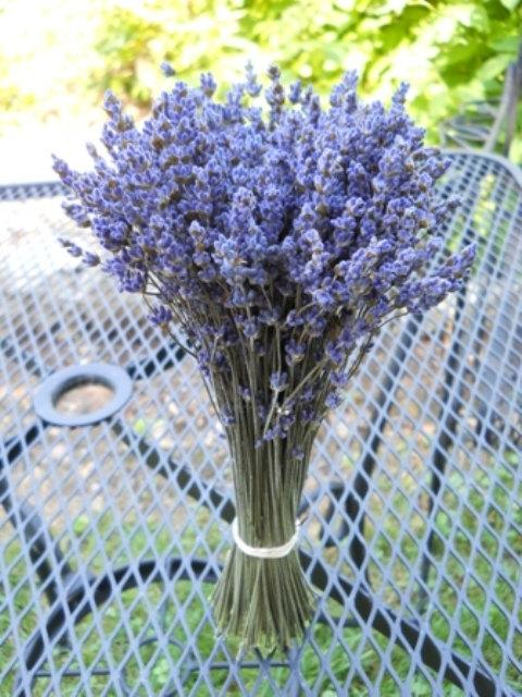 Свадьба - Dried Lavender (English) bundle / bunch  6-8 inches tall