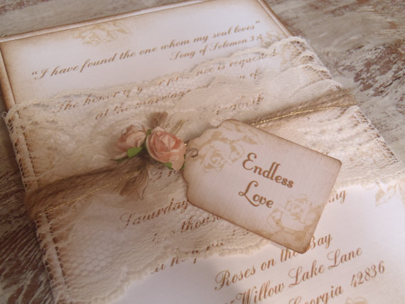 Vintage, Blush PinkRoses, Lace Band Romantic, Paris, Shabby, Rustic, Victorian Wedding ...