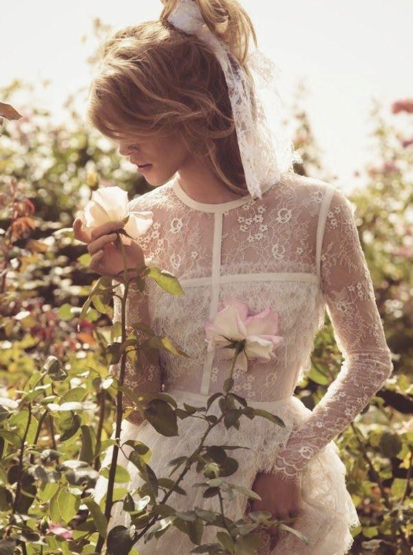 Hochzeit - White Rose