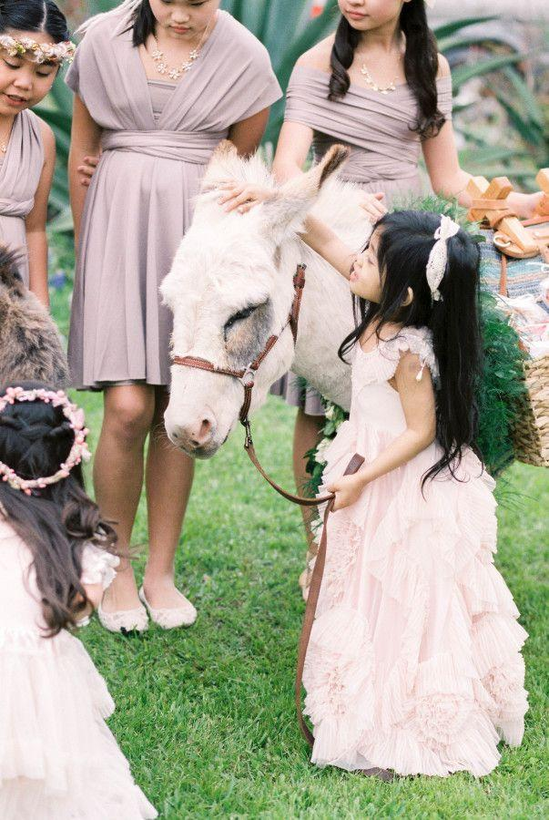 Hochzeit - This Intimate Wedding Had One Very Special Guest: A Donkey!