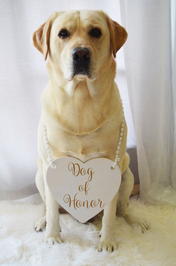 Свадьба - Dog Of Honor Engraved Wedding Sign With Pearl Handle. Pick Your Color. Pets Wedding Sign