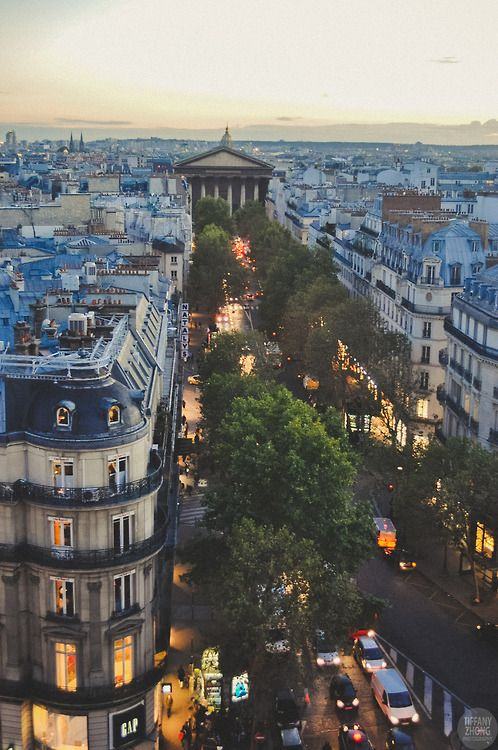 Wedding - Dusk, Paris, France