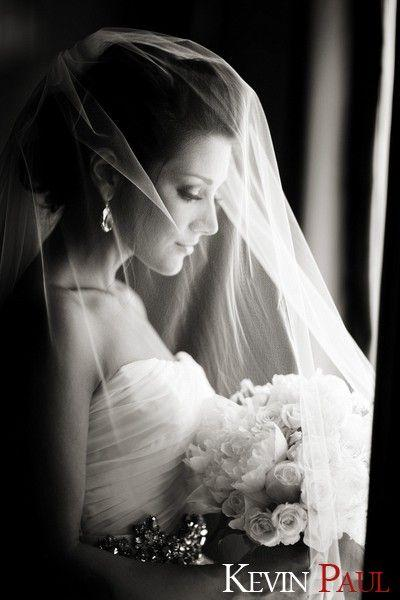 Wedding - Wow, What A Beautiful Photo! A Must Have Wedding Photo! Bride With Veil Black And White - Puck Wedding