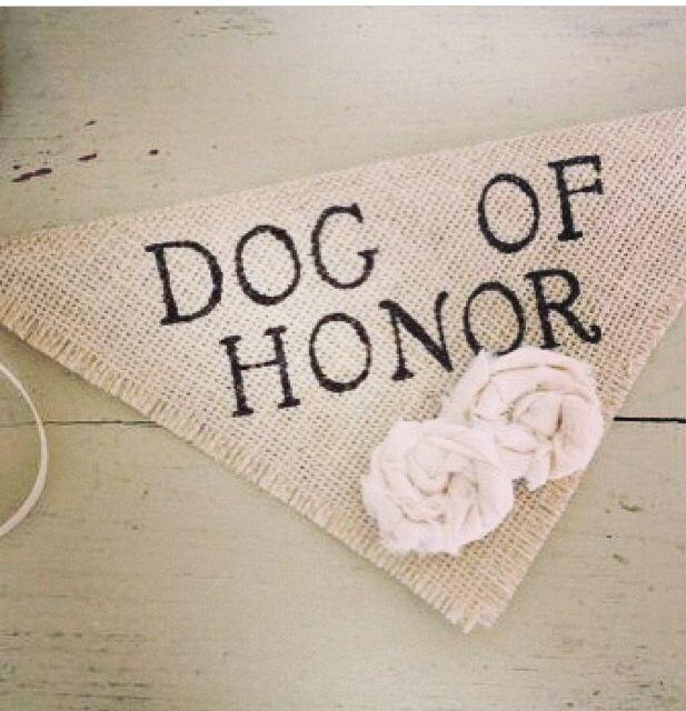 Mariage - Ivory Dog Of Honor Girl Collar With Flowers Bandana Rustic Burlap Wedding Photo Prop Save The Date Proposal Engagement Photos