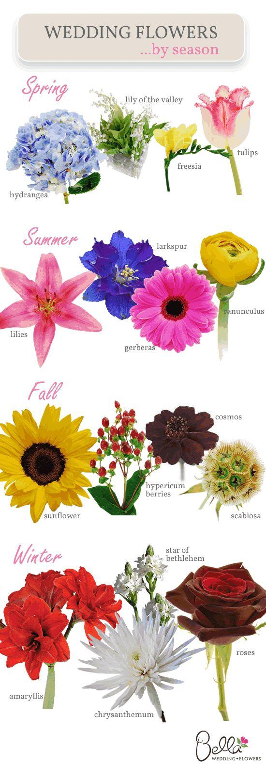 Wedding - Which Wedding Flowers Are In Season When?