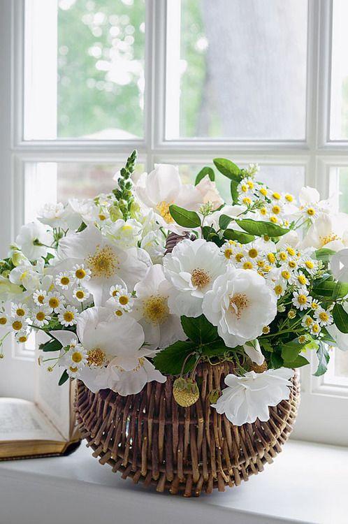 Wedding theme rustic white flowers 2557565 weddbook rustic white flowers mightylinksfo