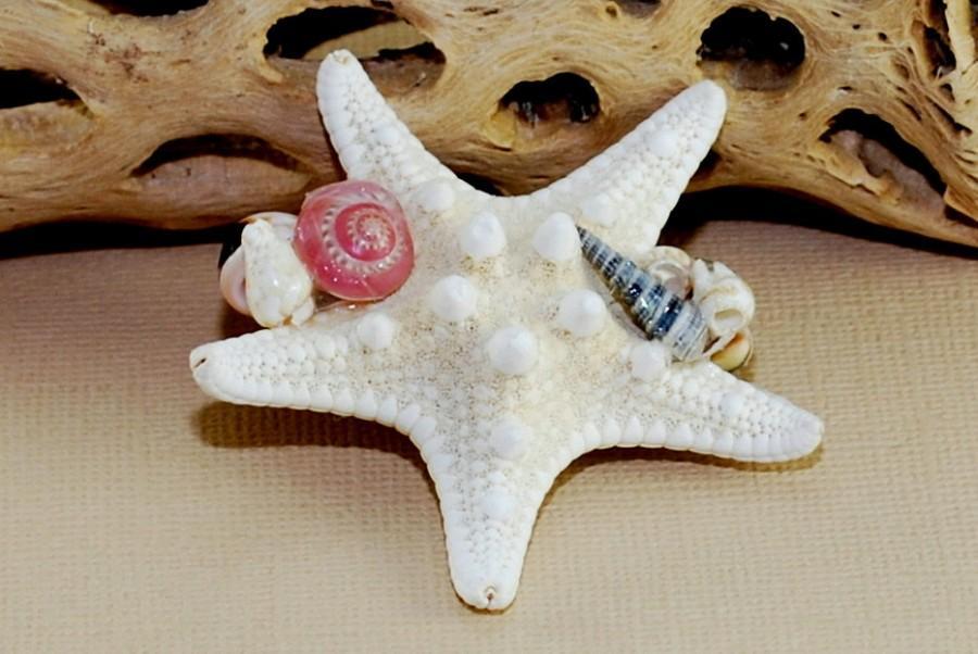 زفاف - Starfish Boutonniere ~ Beach Wedding ~ Knobby Starfish Boutonniere ~ Pinbacks ~ Seashell Boutonniere ~ Beach Wedding Boutonniere