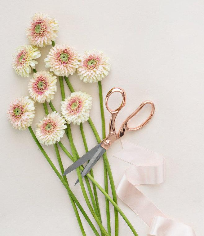 Hochzeit - Rose Gold Scissors (Rose Quartz)