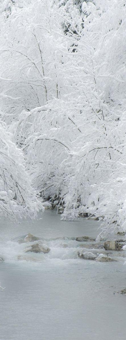 Свадьба - Taste Of Winter - Through Several Amazing Photos (Part 1
