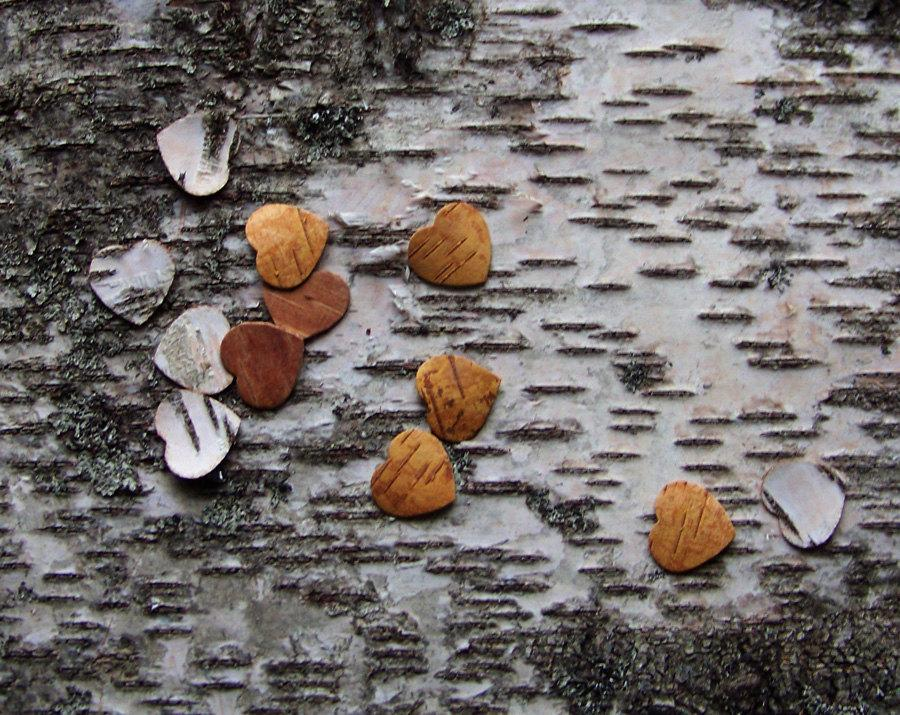 Mariage - 50 die cut Birch bark wooden hearts, Valentine's day decor, natural crafting, spring wedding, invitations, table confetti and decorations