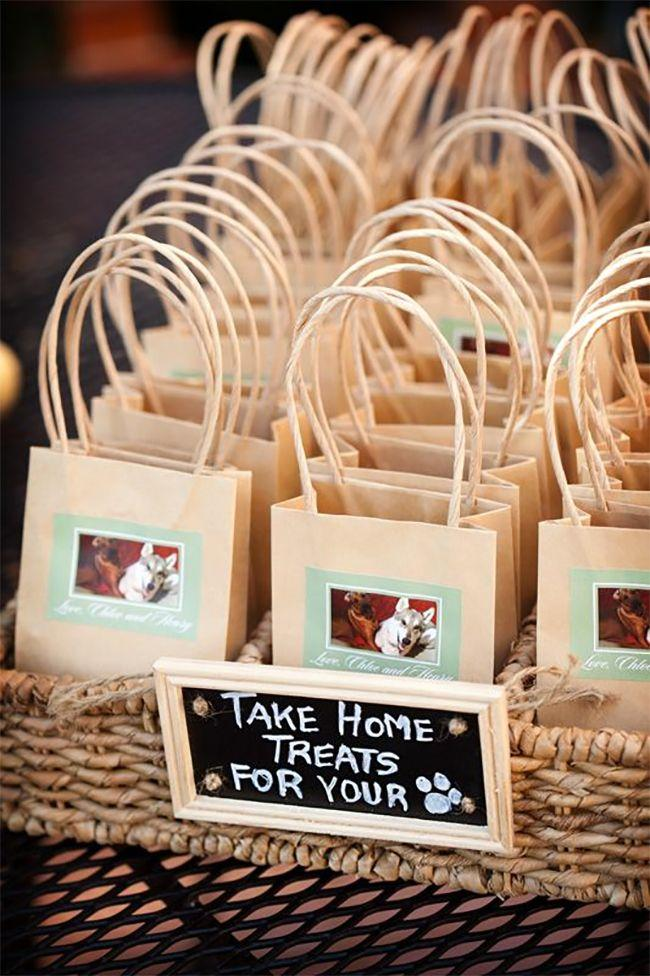 Mariage - 15 Ways To Include Your Pet In Your Big Day!