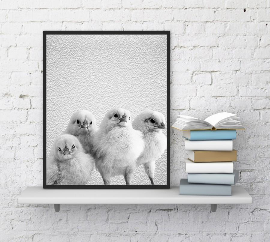 Wedding - Chickens print, Chicken wall decor, Farm animal print, Funny chickens, Nursery wall art, Chickens poster, Photography, InstantDownloadArt1
