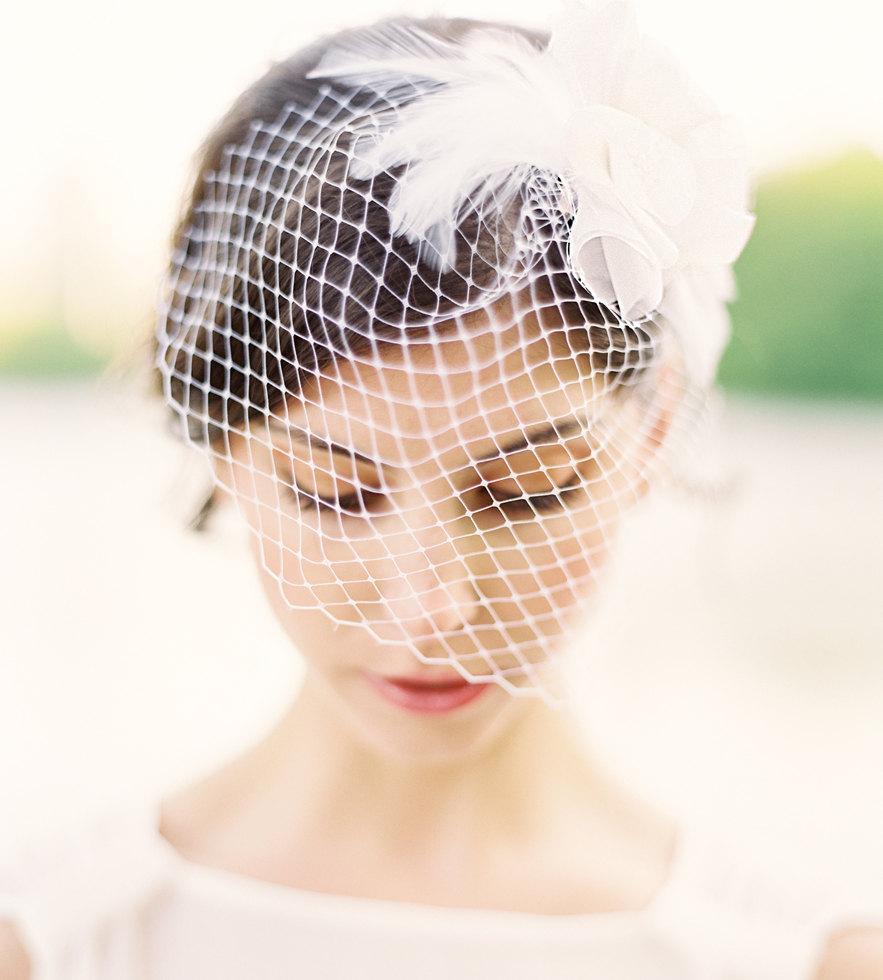 Hochzeit - Lila Birdcage Veil with Swarovski Crystal and Feathers