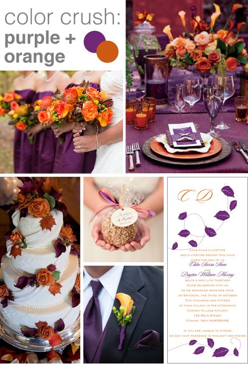 Color Crush Purple And Orange