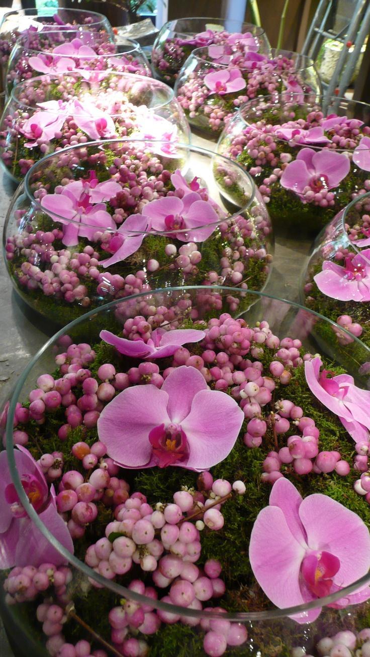 Свадьба - The Future Of Brandi's Botanicals