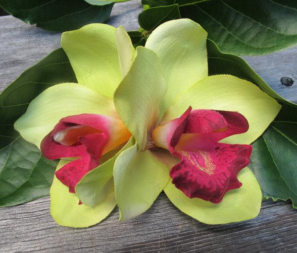 Wedding - Hawaiian Lime Green and Wine  Two Orchids hair flower clip - Weddings -