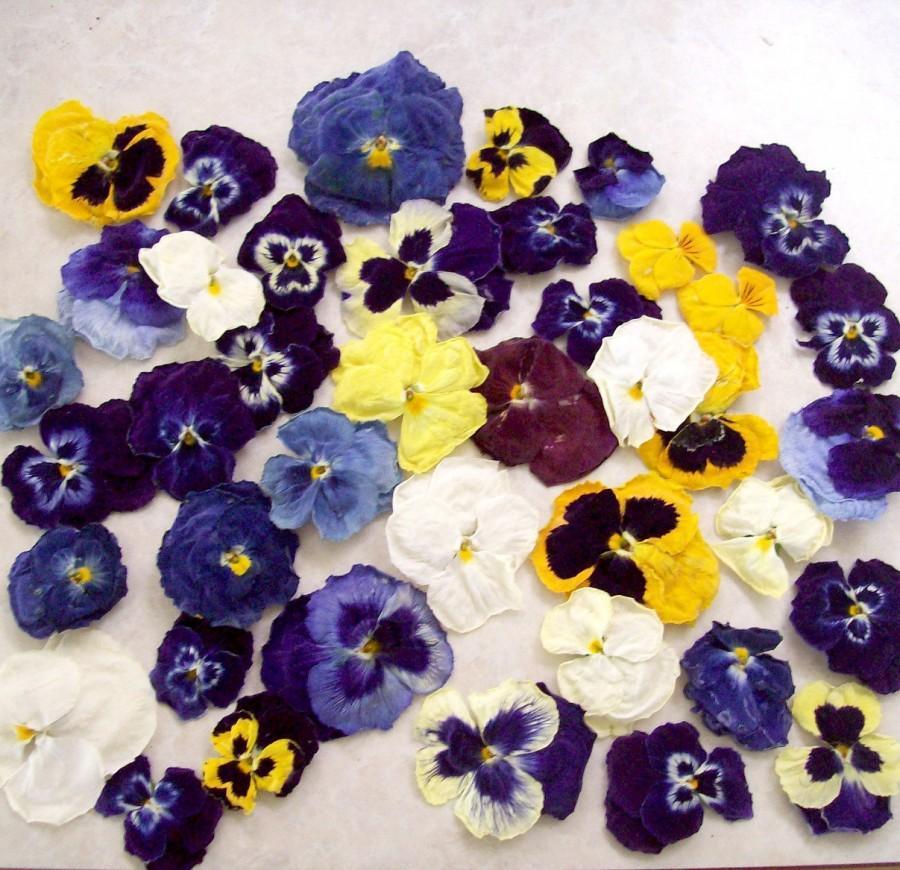 زفاف - Pansies, Dried Flowers, Centerpieces, Flower Girl, Flower, Wedding Decoration, Pot Pourri, Sachets, Favors, Craft Supplies, 100 Real Pansies