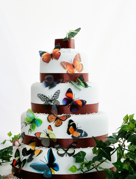 Hochzeit - 50 Natural Butterflies great for Cake Toppers,  table decorationsand invitations