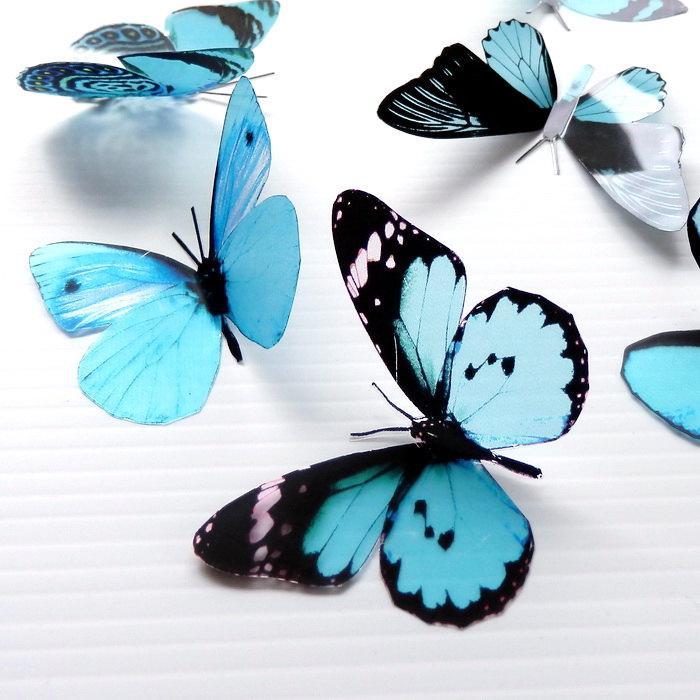 Hochzeit - 12 x Mixed Aqua 3D Transparent Butterflies