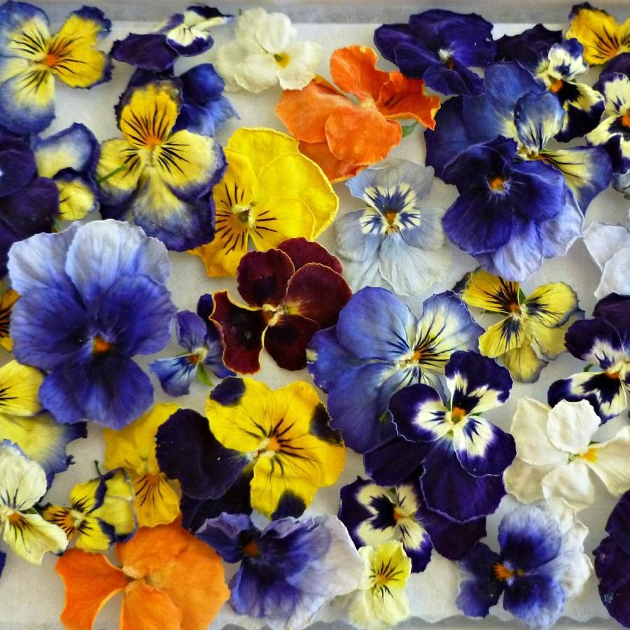 Dried violas dry flowers real wedding confetti for Dried flowers craft supplies