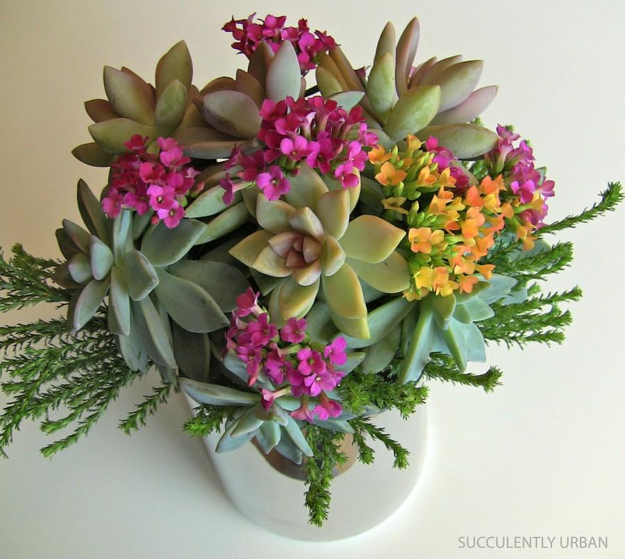 Mariage - Succulent wedding bouquet, Bridal succulent bouquet, wedding bouquet.