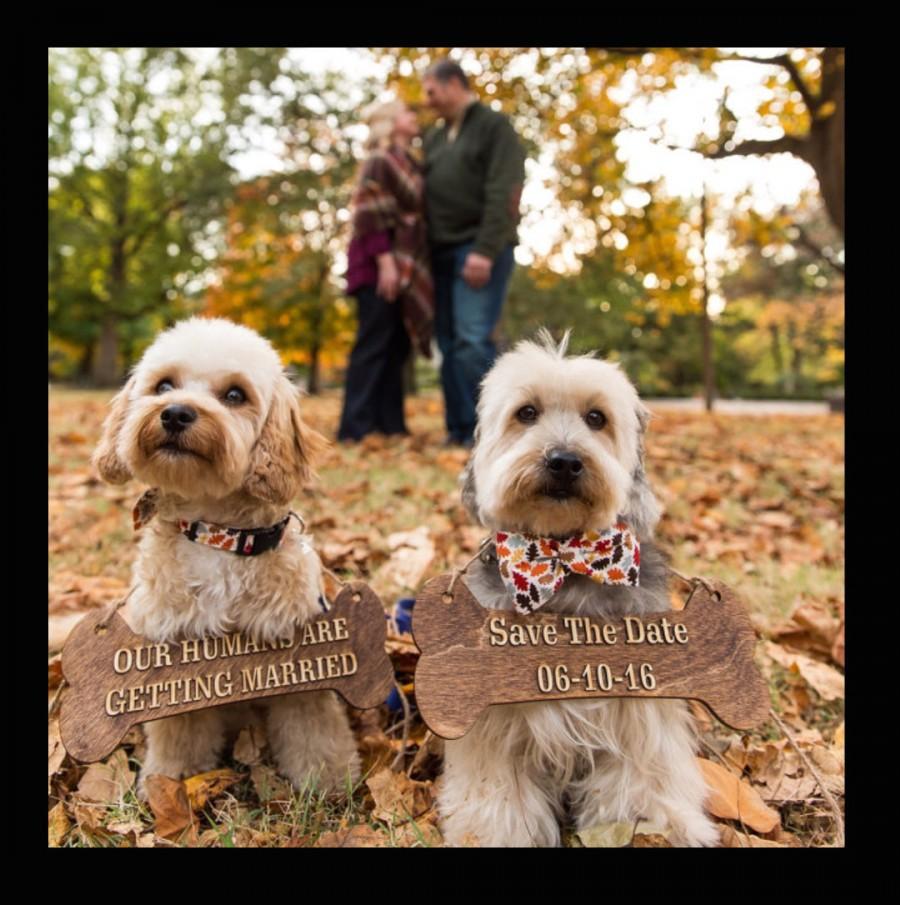 Свадьба - Engagement Pet Dog Sign, Save the Date Sign, Dog Prop, Wedding Dog, Engagement Photo Prop, Photo Shoot, Dog Bone Sign, Rustic Wedding