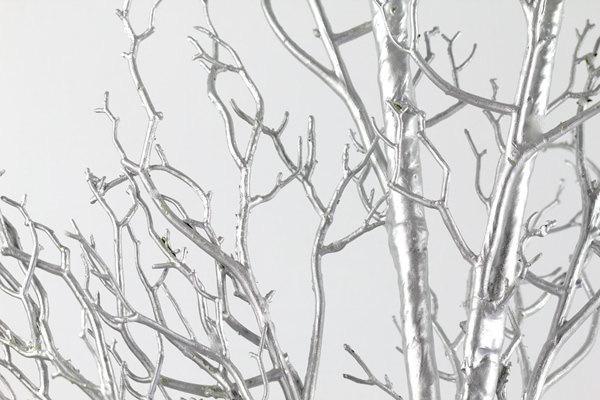 12 20 Silver Manzanita Branches Free Shipping 100 Natural Fresh Trimmed For Diy Wedding Centerpieces