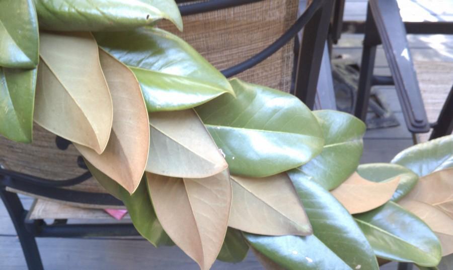 Mariage - 6-foot fresh Magnolia Christmas garland for mantle, stairway or doorway!