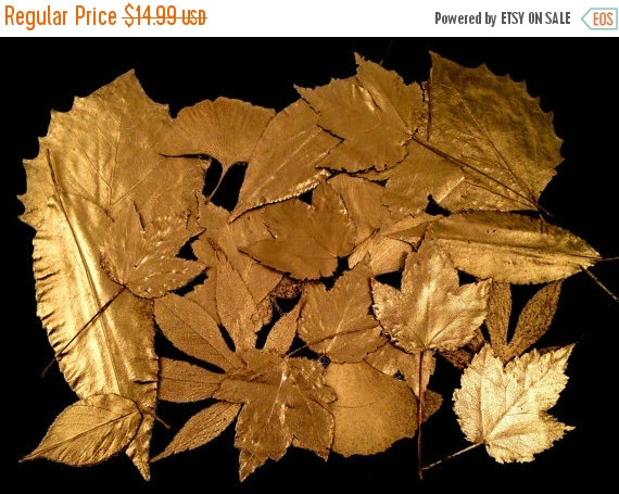 Hochzeit - 12 GOLD PAINTED LEAVES, Real Pressed Fall Leaf Assortment, Hand Painted Golden - Perfect for Festive Fall & Holiday Decor, Candles, Cards