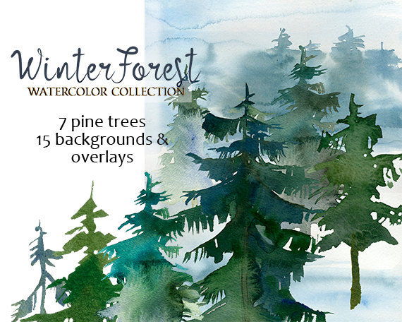 Pine Trees Watercolor Clipart Fur Trees PNG Christmas Winter
