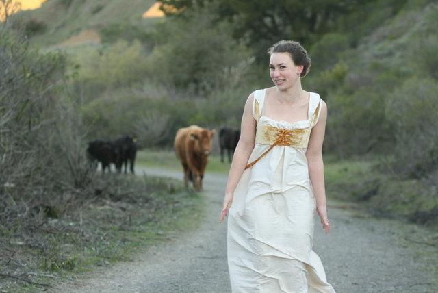Hochzeit - Jane Austen Wedding Dress