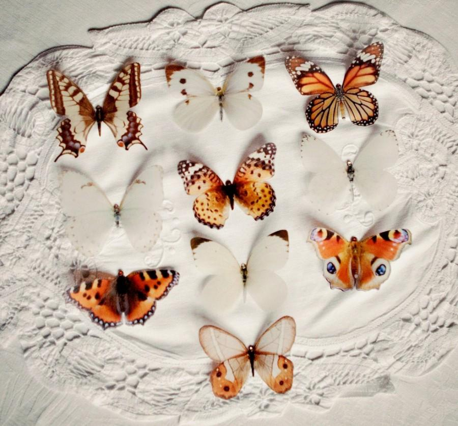 Wedding - Frosted Paper Butterfly decorations (box of 10) Brown and cream Mix