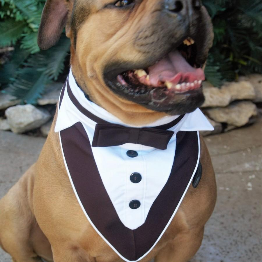 Свадьба - Dog Tuxedo, Dog Wedding Attire, Pet Wedding Clothes, Tuxedo Dog Collar, Black and White Tuxedo, Boy Wedding Clothes