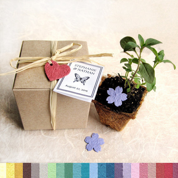 Wedding - 15 Plantable Wedding Favors with Biodegradable Pots and Flower Seed Paper - Favor Boxes - Herb Seed Planting Kit - Baby Shower Favors