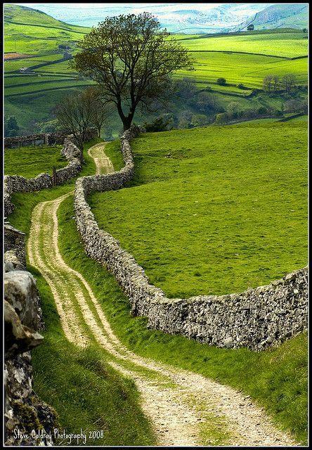 Hochzeit - Country Lane