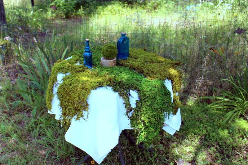 Свадьба - Real Moss-Preserved Sheet Moss-Thuidium Delicate Fern Moss-Gallon Bag floral moss-Wedding decor-Wreaths-Wedding moss