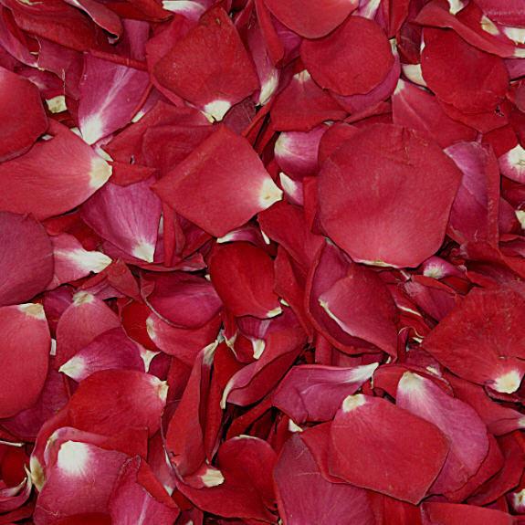 Hochzeit - Valentine's Day Rose Petals. 100 cups Falling In Love Rose Petals. Wedding Petals. Proposal Petals.Valentine's Day Gift Idea. Rose Petals