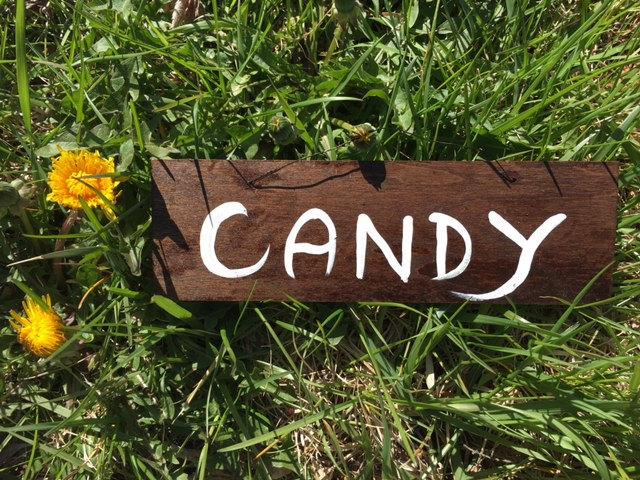 Mariage - Candy Rustic Chic Wedding Hanging Wood Signs, Country Wedding, Fall Outdoor Wedding Decor, Wedding Wood Signage, Hanging Wedding Sign