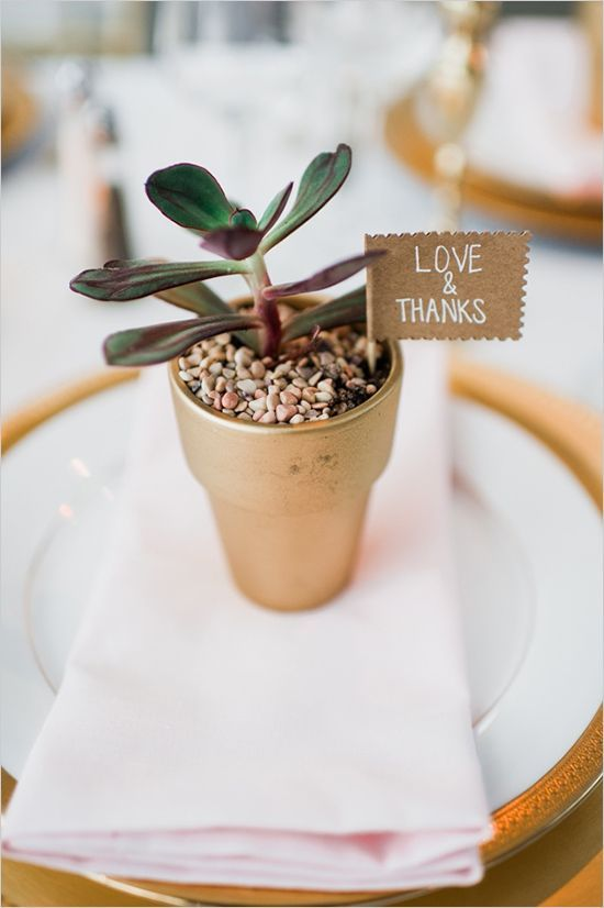Mariage - 3 Ways To Use Succulents In Your Wedding