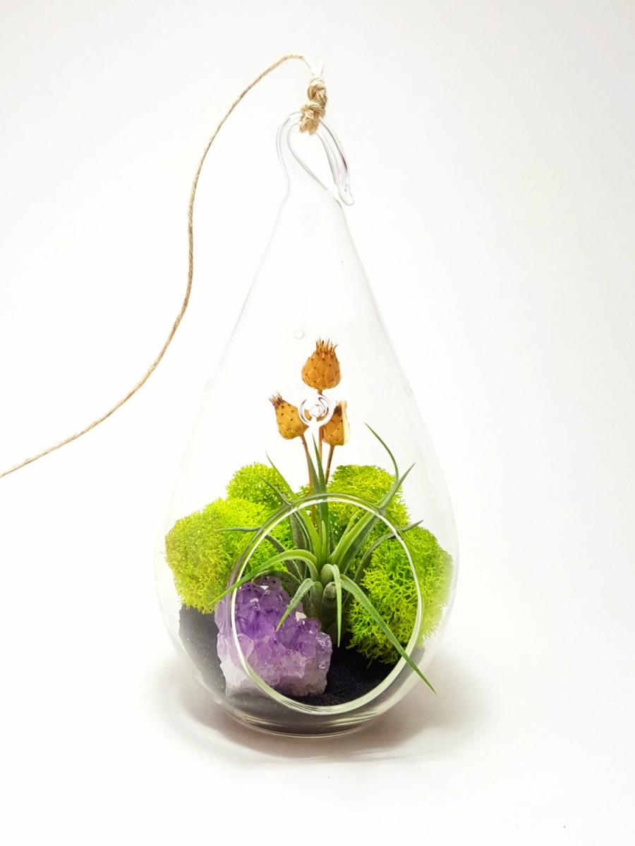 Свадьба - Air Plant Terrarium Kit with Purple Amethyst Crystal / Midnight Forest  / Teardrop, Round or Both / Free Shipping