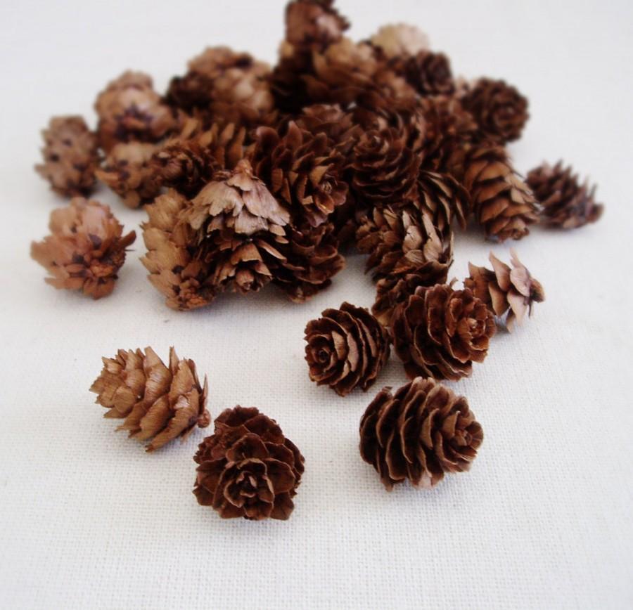 Свадьба - Pine Cones Mini Pine Cones Rustic Wedding Decor Small Pine Cones Vase Filler Table Scatter Hemlock Pine cones
