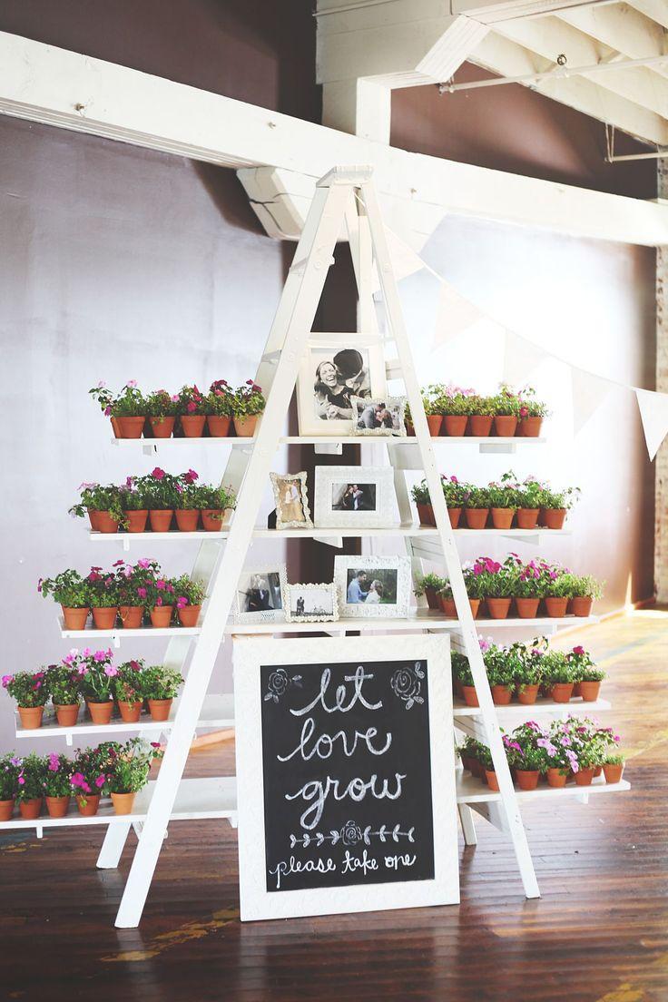 Hochzeit - Succulent Wedding Favors Best Photos