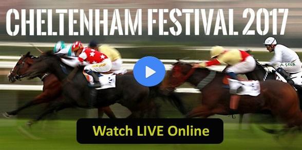 Wedding - Cheltenham Festival - 2017, Live Stream, Watch, Horse Racing, Cheltenham, TV Coverage
